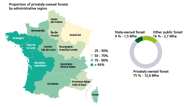 Map Of France With States.Who Does The French Forest Belong To Inventaire Forestier